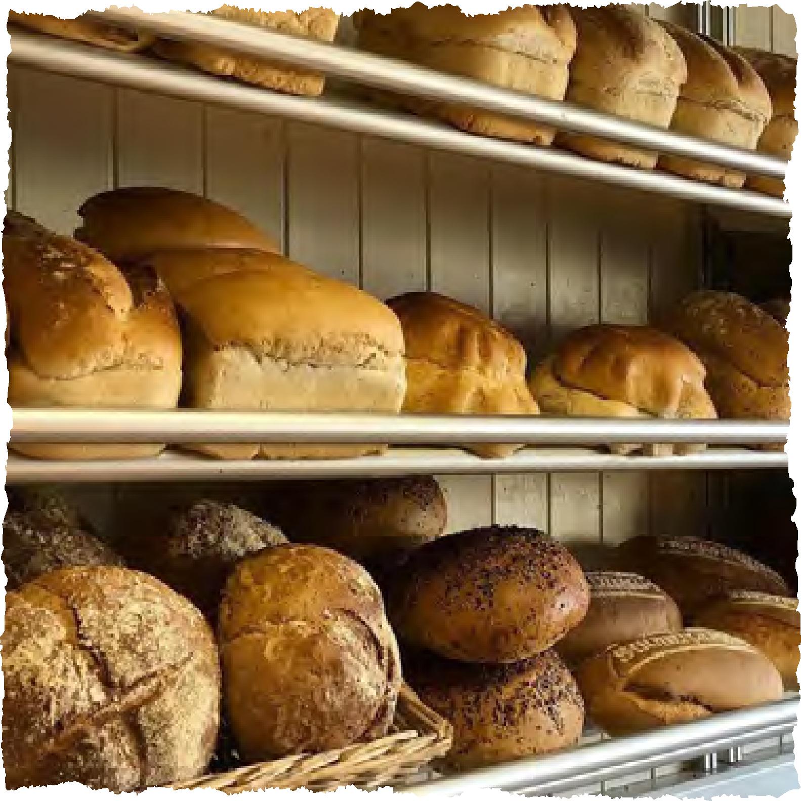 bread-supplier